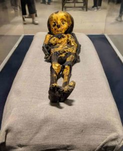 a Golden Mummy of a kid at the Egyptian museum